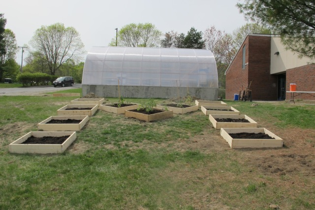 Raised beds in the shape of an M_1690